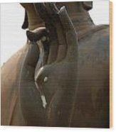 Hand Of Buddha 16 Wood Print