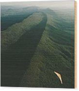 Hang Glider Over Massanutten Mountain Wood Print