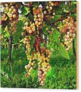 Hanging Grapes On The Vine Wood Print by Elaine Plesser