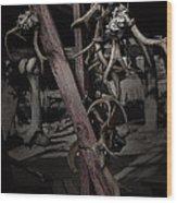 Hanging Rack Wood Print by Kelly Rader