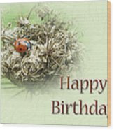 Happy Birthday Greeting Card - Ladybug On Dried Queen Anne's Lace Wood Print