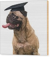 Happy Graduation Wood Print