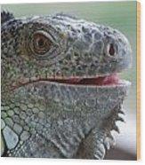 Happy Lizard Wood Print