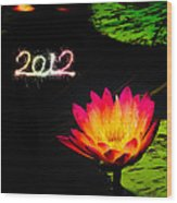 Happy New Year 2012 Wood Print by Michael Taggart