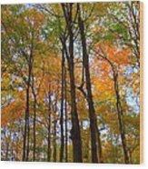 Happy Orange Wood Print