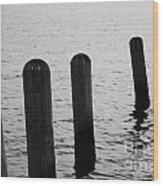 Harbor Ties Wood Print