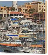 Harbor Waterfront In Cabo San Lucas Wood Print