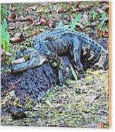 Hard Day In The Swamp - Digital Art Wood Print