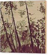 Harmony Ridge Wood Print