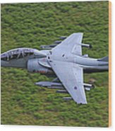 Harrier Low Level Wood Print