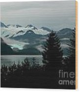 Harriman Glacier Wood Print