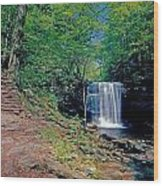 Harrison Wright Falls - Summertime Wood Print