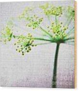 Harvest Starburst 2 Wood Print by Linda Woods