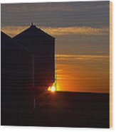 Harvest Sunrise Wood Print