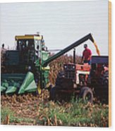 Harvesting Corn Wood Print