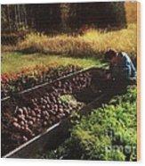Harvesting The Crop Wood Print