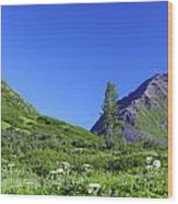 Hatcher Pass Alaska Wood Print
