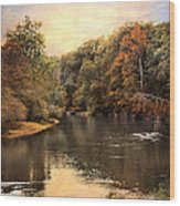 Hatchie River Wood Print by Jai Johnson