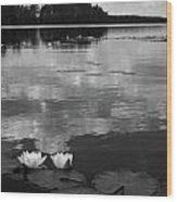 Haukkajarvi Water Lilies In Bw Wood Print