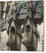 Haunted Birdhouse Wood Print