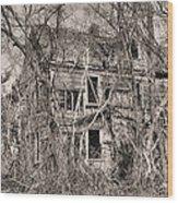 Haunting In Delmarva Wood Print by JC Findley