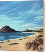 Havik Beach Wood Print by Janet King