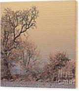 Frost 2 Wood Print