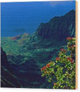 Hawaiian Cliffs Wood Print