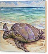 Hawaiian Green Turtle Wood Print