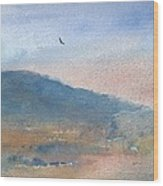 Hawk At Sunset Over Stenbury Down Wood Print by Alan Daysh