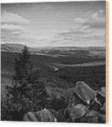 Hawk Mountain Sanctuary Bw Wood Print