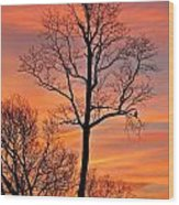 Hawk Watching The Sunrise Wood Print