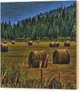 Hay Bales II Wood Print