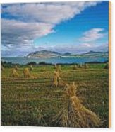 Hay Bales In A Field, Ireland Wood Print
