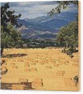 Hay Field With Mountain Background Wood Print