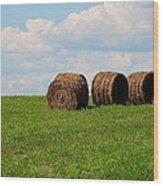 Hay Hay Hay Wood Print
