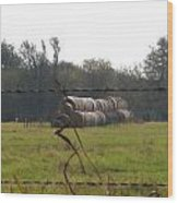 Hay Lined Up Wood Print