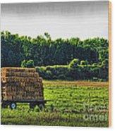 Hay Ride Wood Print