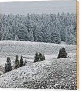 Hayden Valley Storm Wood Print