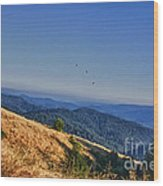 hd 377 hdr - Grasslands Wood Print