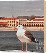 hd 384 hdr - Lone Seagull Wood Print
