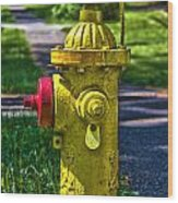 Hdr Fire Hydrant Wood Print