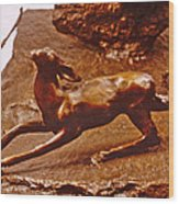 He Who Saved The Deer - Deer Detail Wood Print