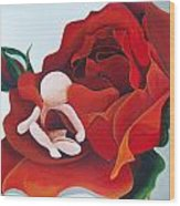 Healing Painting Baby Sitting In A Rose Wood Print