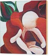 Healing Painting Baby Sitting In A Rose Detail Wood Print