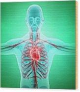 Healthy Cardiovascular System, Artwork Wood Print