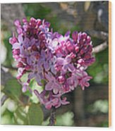 Heart Shaped Lilac Wood Print