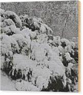 Heavy With Snow Wood Print