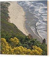 Heceta Beach View Wood Print
