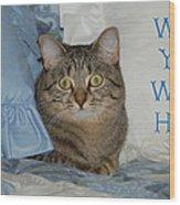 Heidi Cat Miss You Wood Print